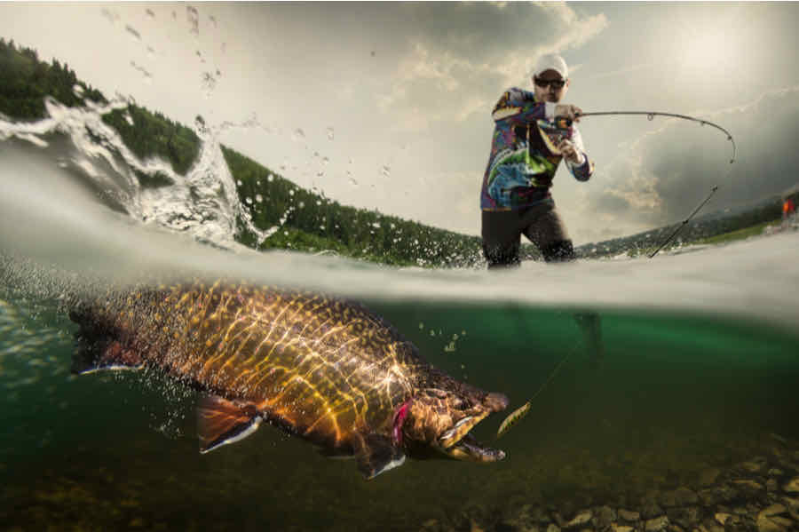 Person Reeling in a Fish