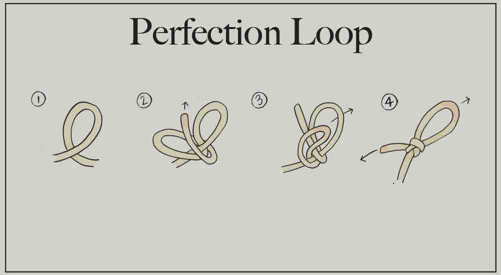 A step-by-step guide for tying a perfection loop knot.