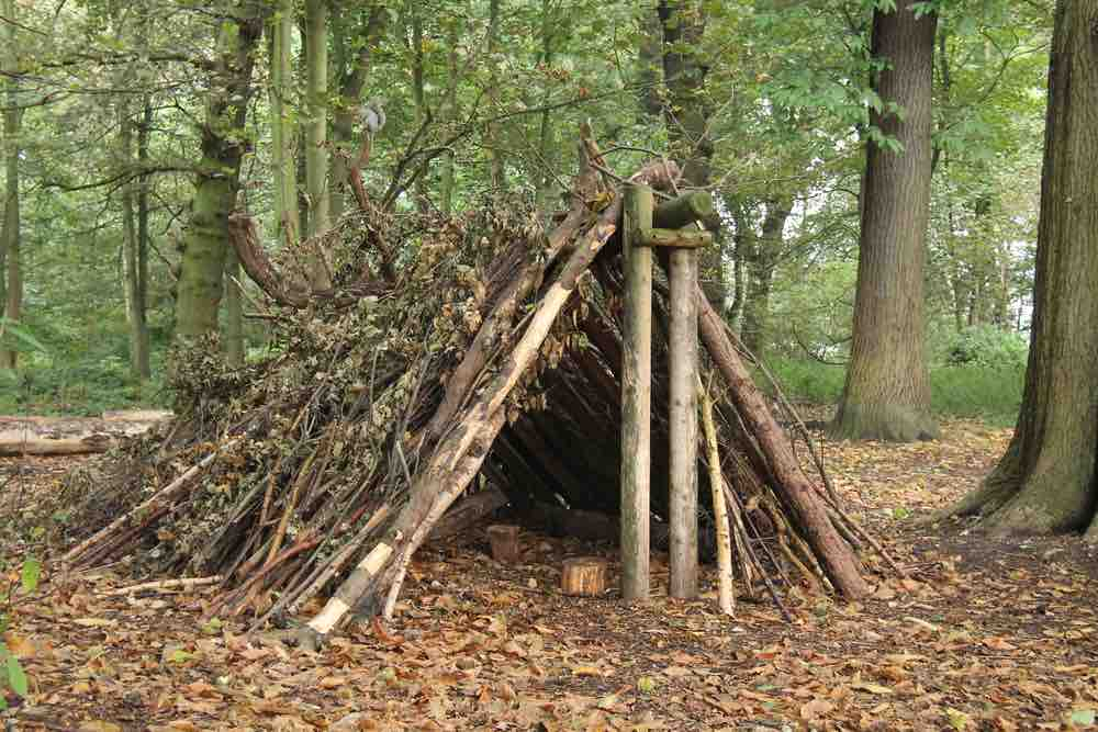 Once you know how to make an A-frame shelter, you never have to worry about surviving in the wilderness for a night or two.
