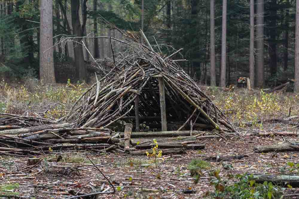 Building shelter is one of the first things you should do once you realize you're lost. An A-frame is just one option.