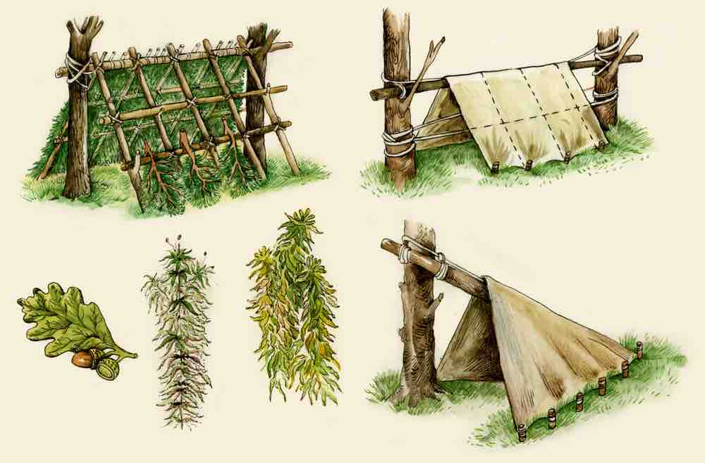 Use what's available in the moment for building an A-frame shelter, you can always adjust and improve later.