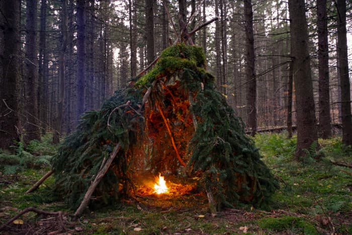 A wikiup shelter covered with evergreen boughs with a small fire built inside.  A wikiup is a class long term survival shelter.